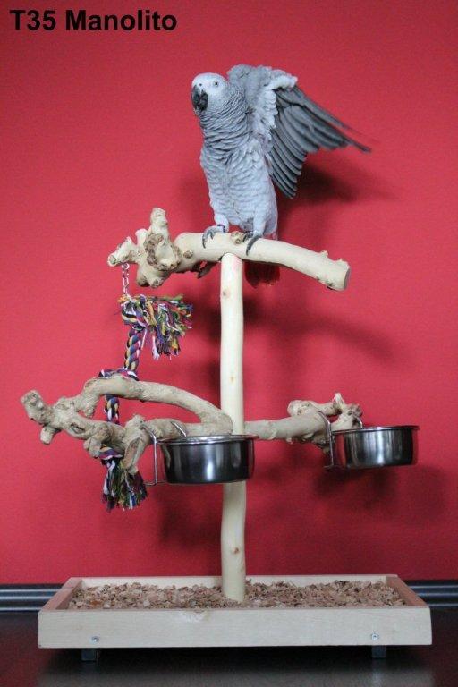 Papageien Freisitz Typ 35