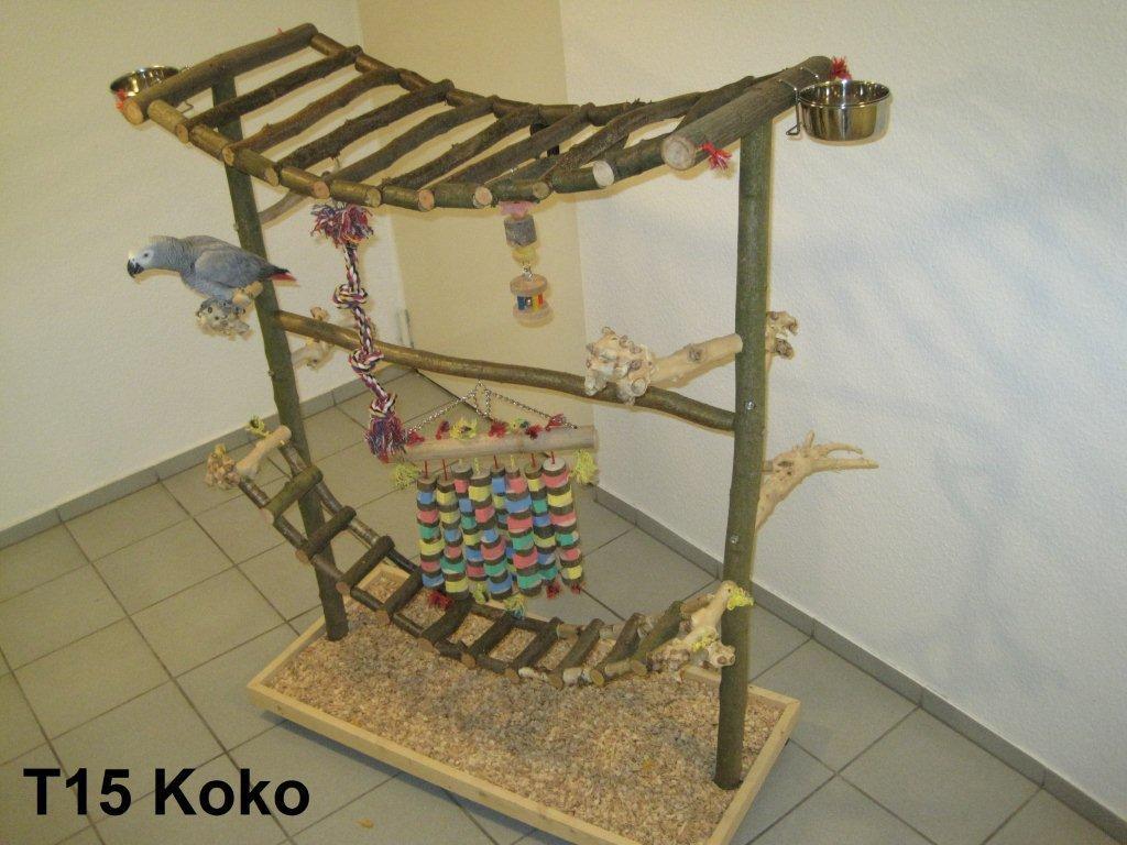 Papageienfreisitz Typ 15 Koko